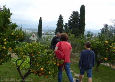 Family amongst their oranges and garden.
